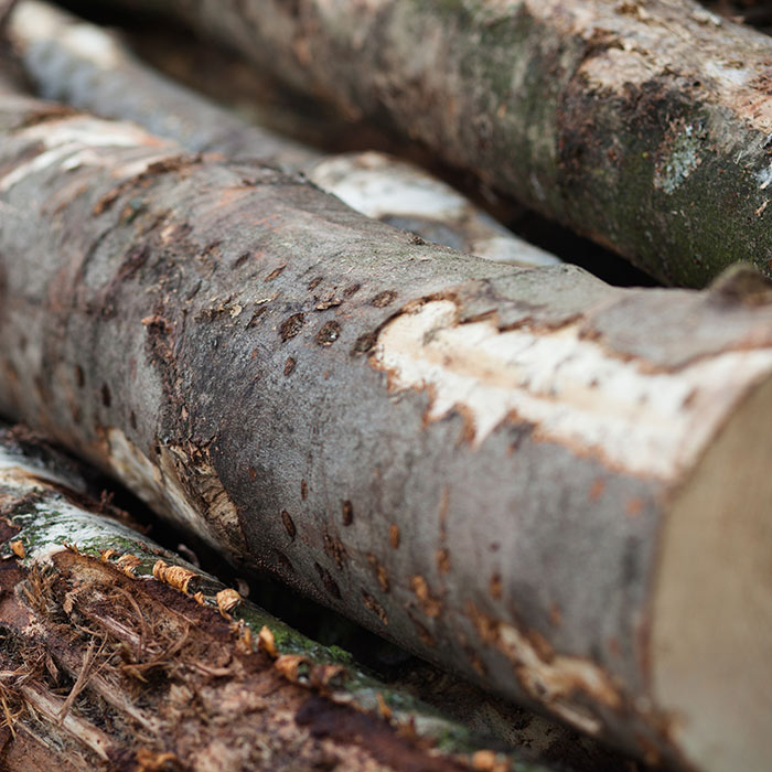 Laubmischholz brennholzstapel brennholz boor